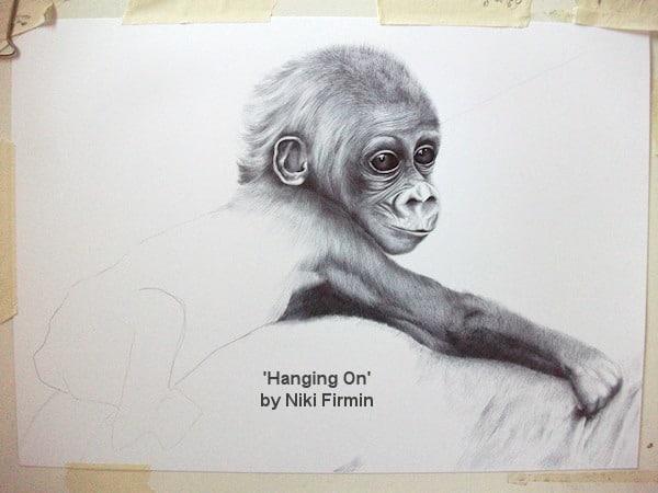 Cross River Gorilla 'Hanging On'