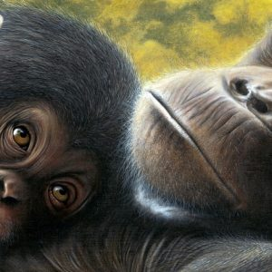 Chimpanzee painting by Daniel Taylor