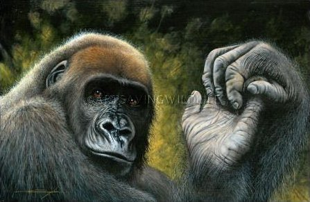 Cross River Gorilla painting